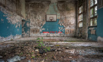 schools-out-nature-reclaiming-an-old-school-gym-beautiful-decay